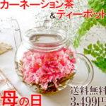 カーネーション茶+ティーポットセット